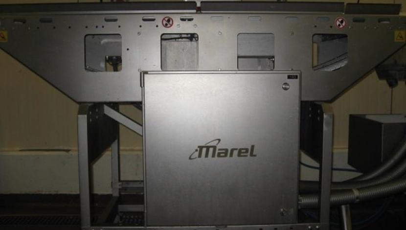 """""""Marel"""" Wiege- und Sortiermaschine"""